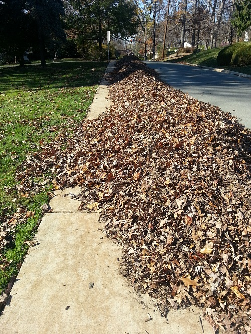 Don't be like these people who put leaves out weeks in advance and block the sidewalk for extended periods of time.